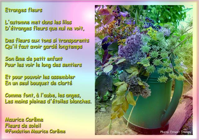 a la rencontre du printemps maurice carême poesie